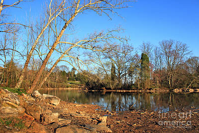 Photograph - Lake And Trees In Early Spring by Todd Blanchard