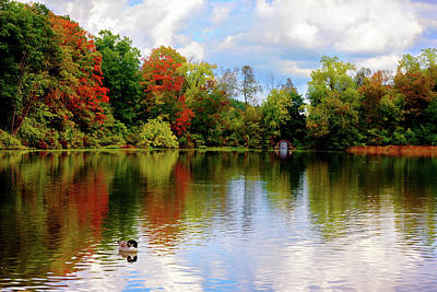 Photograph - Lake At Forest Park by Camille Lopez