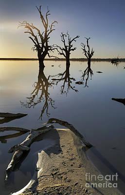 Lake Bonney Barmera Riverland South Australia Art Print by Bill  Robinson
