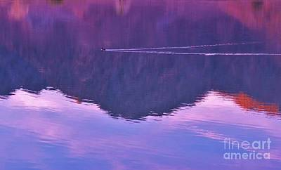 Lake Cahuilla Reflection Art Print by Michele Penner