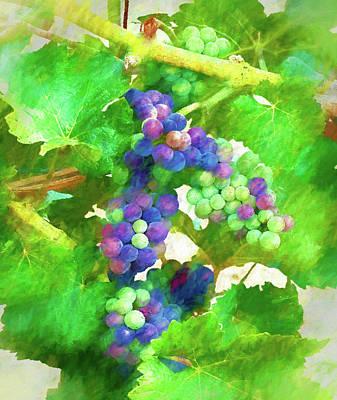 Grape Leaf Digital Art - Lake Chelan Wine Grapes by Greg Sigrist