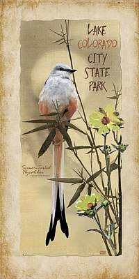 Mockingbird Digital Art - Lake Colorado City State Park by Jim Sanders