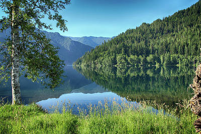 Photograph - Lake Crescent 1 by Marie Leslie