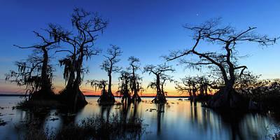 Florida Photograph - Lake Disston Twilight by Stefan Mazzola