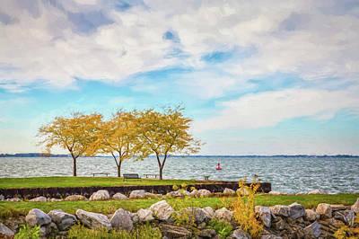 Photograph - Lake Erie Musings by John M Bailey