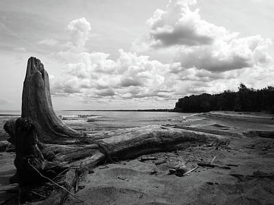 Photograph - Lake Erie Shore Bw by Shawna Rowe
