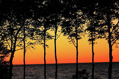Red Roses - Lake Erie Silhouettes by Bruce Patrick Smith