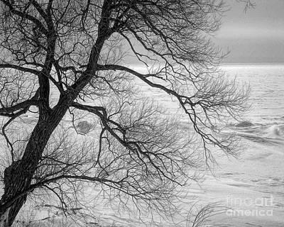 Photograph - Lake Erie Winter by John Freidenberg