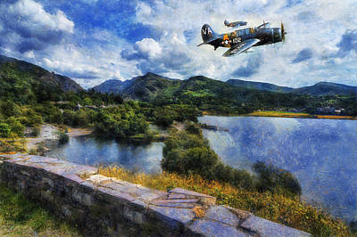Photograph - Lake Flight  by Ian Mitchell