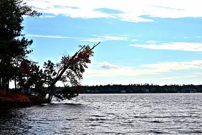 Photograph - Lake Greenwood by Tara Potts