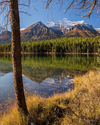 Photograph - Lake Herbert Reflections by Tim Kathka