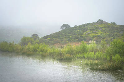 Photograph - Lake Hodges - Heron Bay by Alexander Kunz