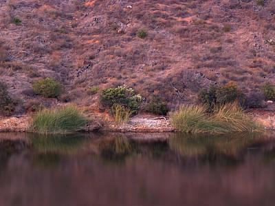 Photograph - Lake Hodges Shoreline Detail by Alexander Kunz
