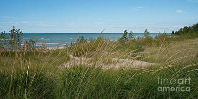 Photograph - Lake Huron Sand And Grasses by Barbara McMahon