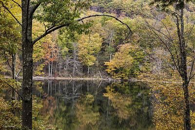 Photograph - Lake In Autumn by Fran Gallogly