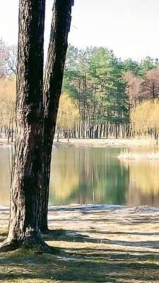 Photograph - Lake In Wood by Oleg Zavarzin