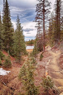 Photograph - Lake Irene 2 by Susan Rissi Tregoning