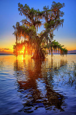 Photograph - Lake Istokpoga Sunset In Lake Placid Florida by Justin Kelefas