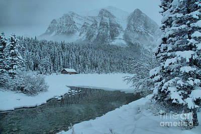 Photograph - Lake Louise Foggy Snowy Morning by Adam Jewell