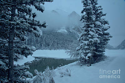 Photograph - Lake Louise Foggy Winter Morning by Adam Jewell