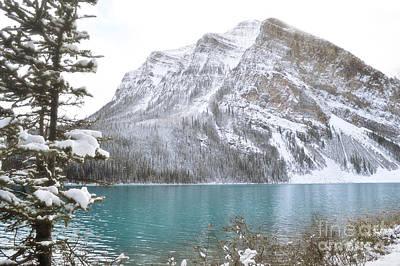 Photograph - Lake Louise Mountain Tree Landscape by Andrea Hazel Ihlefeld