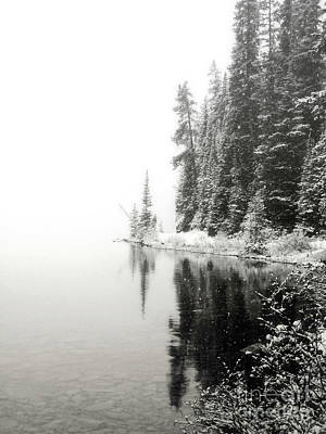 Photograph - Lake Louise Pine Trees Frost Landscape by Andrea Hazel Ihlefeld