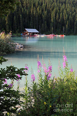 Photograph - Lake Louise Wildflowers And Boathouse by Carol Groenen