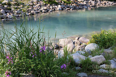 Photograph - Lake Louise With Wildflowers And Weeds by Carol Groenen