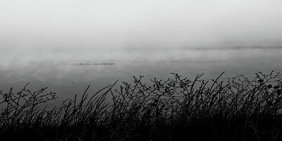 Photograph - Lake Mary Fog by Tim Richards
