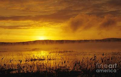 Lake Massabesic - Auburn New Hampshire Usa Art Print by Erin Paul Donovan