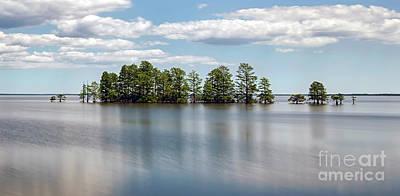 Photograph - Lake Mattamuskeet by Art Cole