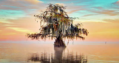 Photograph - Lake Maurepas In Pastels by Andy Crawford