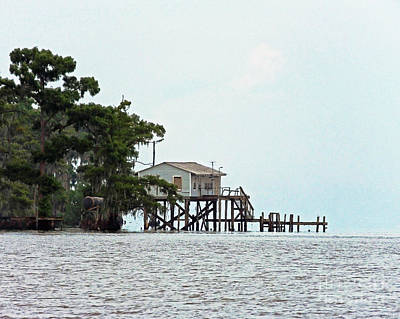 Photograph - Lake Maurepas La by Lizi Beard-Ward