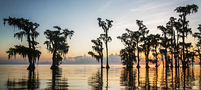 Andy Crawford Photograph - Lake Maurepas Sunrise by Andy Crawford