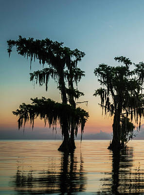 Photograph - Lake Maurepas Sunrise Triptych No 3 by Andy Crawford