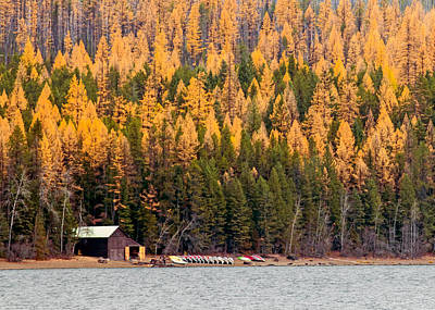 Photograph - Lake Mcdonald Boatshed by Nicholas Blackwell