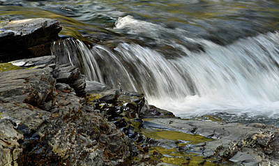 Photograph - Lake Mcdonald Creek Cascade by Bruce Gourley