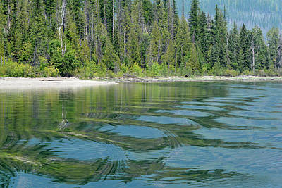 Photograph - Lake Mcdonald Ripples by Bruce Gourley