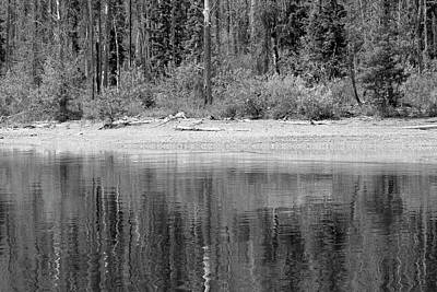Photograph - Lake Mcdonald Shoreline Reflection Blacka And White by Bruce Gourley