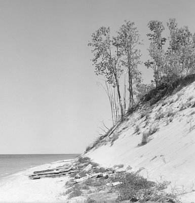 Lake Michigan Dunes Art Print by Richard Singleton