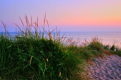 Photograph - Lake Michigan by Randy Pollard