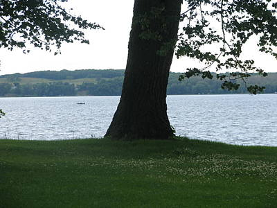 Photograph - Lake Miltona 5 by Hasani Blue
