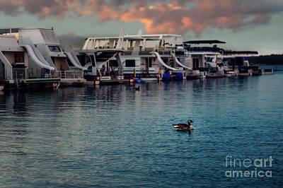 Lake Murray Morning At The Marina Art Print by Tamyra Ayles