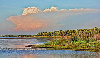 Photograph - Lake Myakka Landscape by HH Photography of Florida