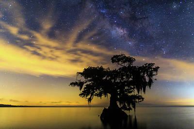 Photograph - Lake Night Sentinel by Stefan Mazzola