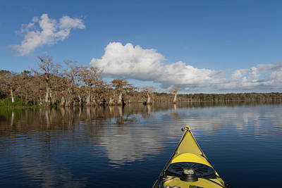 Photograph - Lake Norris Kayak by Paul Rebmann