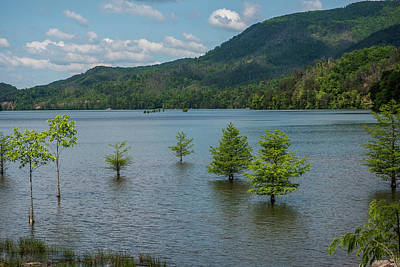 Ocoee Photograph - Lake Ocoee by Paul Freidlund