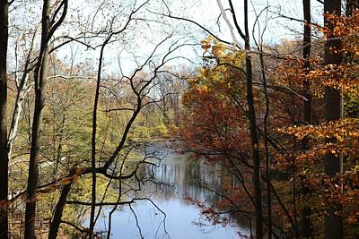 Photograph - Lake Of Autumn by Donald C Morgan