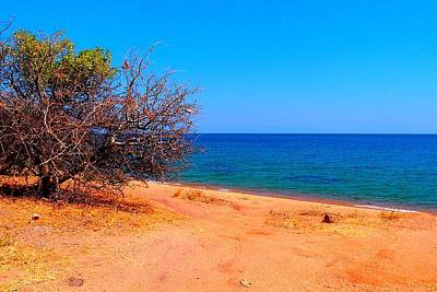 Photograph - Lake Of Malawi 01 by Dora Hathazi Mendes