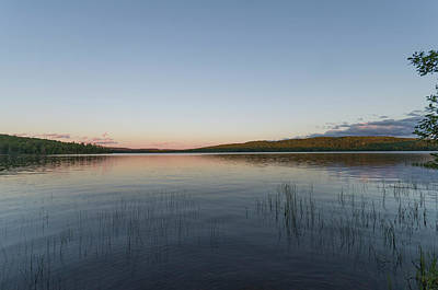 Animal Paintings David Stribbling - Lake of Two Rivers at Sundown by Bob Corson